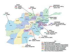 AFG Security & Poppy Cultivation 2008 Map