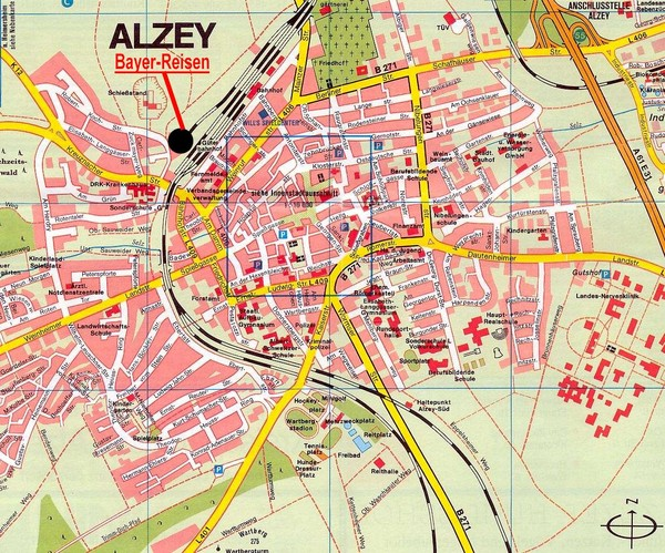 real alzey