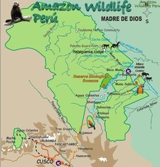 Amazon Region near Cuzco Map