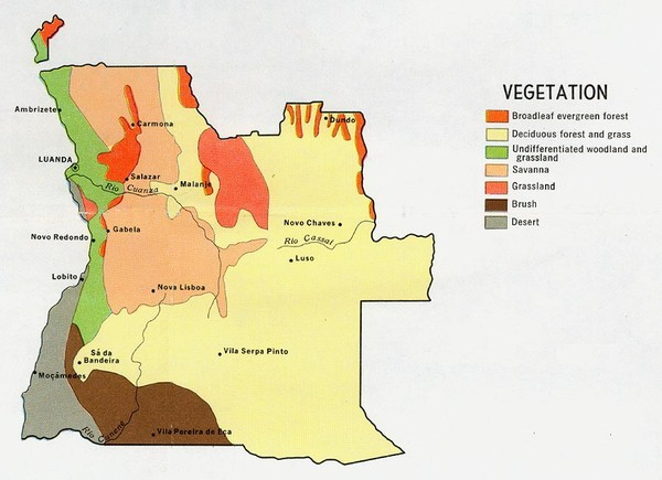 Angola vegetation Map