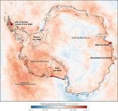 Antarctic Temperature Trend 1981-2007 Map