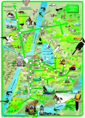Asuncion Tourist Map
