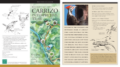 Bastrop, Texas State Park - Carrizo Interpretive Trail Map