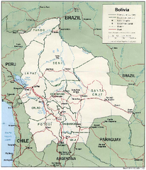 Bolivia Detail Map, 1993 Map