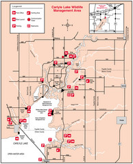 Carlyle Lake, Illinois Site Map