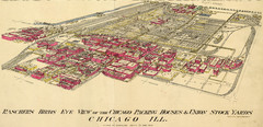 Chicago Meatpacking District and Stockyards (1890...