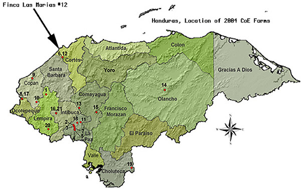 Coffee Plantations Of Honduras Map Mappery - Hondurus map