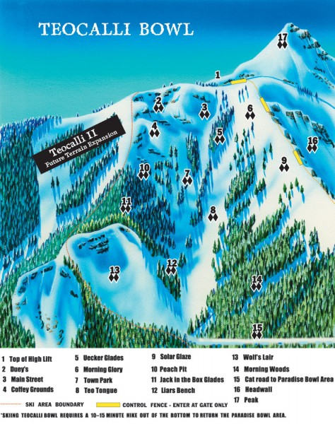 Crested Butte Mountain Resort Ski map - Teocalli Bowl Inset