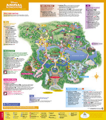 Disney's Animal Kingdom Map