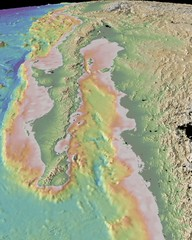 Gulf of California topograpuy Map