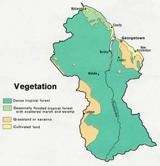 Guyana - Vegetation, 1973 Map