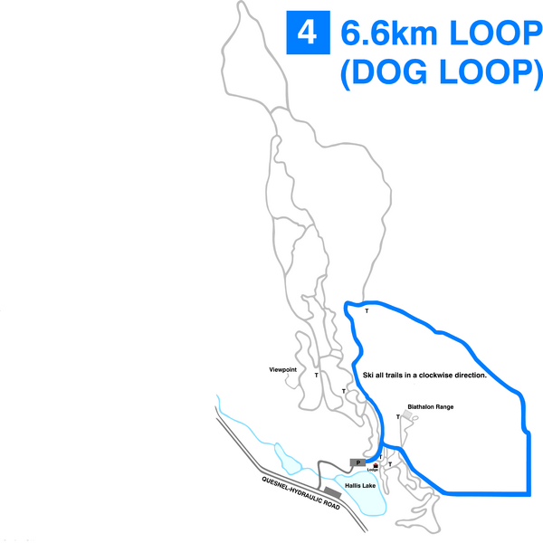Hallis Lake Dog Loop Ski Trail Map