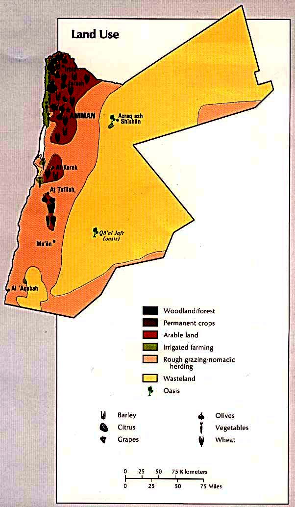 Ethnic Groups In Jordan