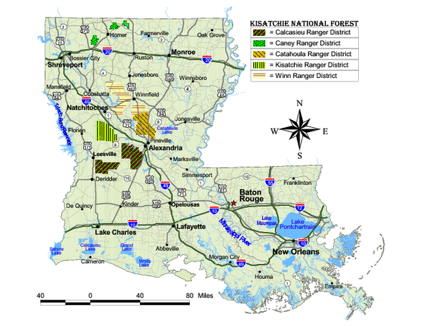 Kisatchie National Forest Map