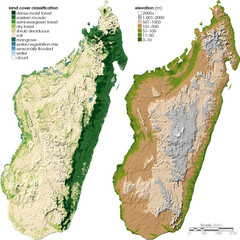 Madagascar land cover and elevation Map