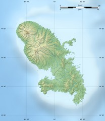 Martinque topography Map