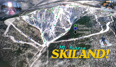 Mt Aurora Skiland Ski Trail Map
