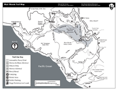 Muir Woods Trail Map