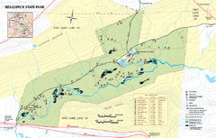 Nescopeck State Park map