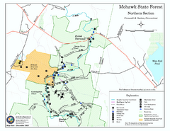 North Mohawk Mountain State Forest (Summer Trails...