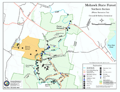 North Mohawk Mountain State Forest (Winter Trails...
