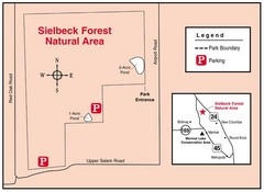 Sielbeck Forest, Illinois Site Map