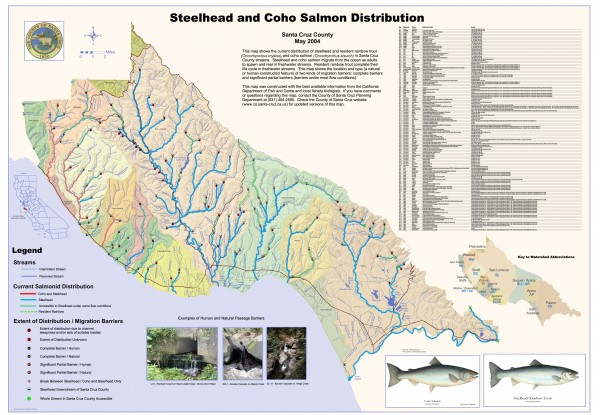 Steelhead and Coho Salmon Distribution Map - Santa Cruz County