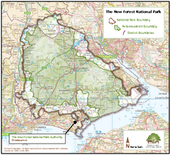 The New Forest National Park Map