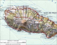 Topo map of Pico