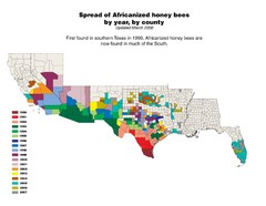 US African Honey Bee Map