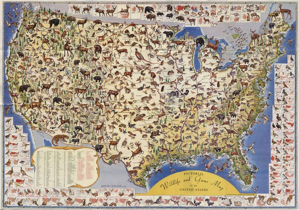 US Wildlife Map USA mappery – Map Usa Game