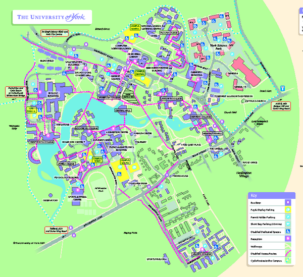 new york university map bnhspine