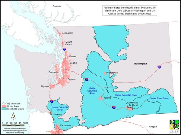 Washington Steelhead Salmon Map Washington State Mappery - Salmon location map us