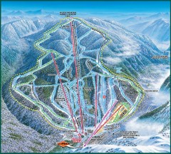 Wildcat Ski trail Map
